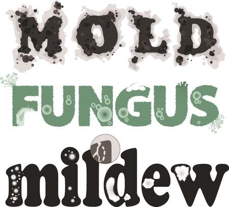 El moho, hongos y moho. Letras decorativas, sin transparencias, EPS 8, cada palabra en una capa separada Foto de archivo - 43676677