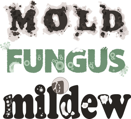 Mold, fungus and mildew. Decorative lettering, no transparencies, EPS 8, each word on a separate layer Ilustracja