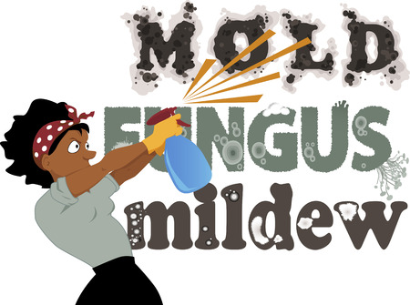 mildew: Black woman spraying from a spray bottle words Mold, Fungus and Mildew on the wall, vector illustration, no transparencies, EPS 8