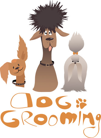 pet services: Dog grooming service illustration with three dogs of different breeds and original lettering, ESP 8 vector illustration, no transparencies