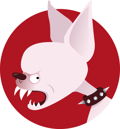 snarl: Snarling cartoon chihuahua head in a spiked collar on a circular background, EPS 8 vector illustration, no transparencies, no mesh