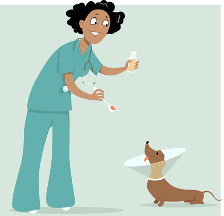 transparencies: Female veterinarian giving a medicine to a dog in a cone collar, vector illustration, no transparencies