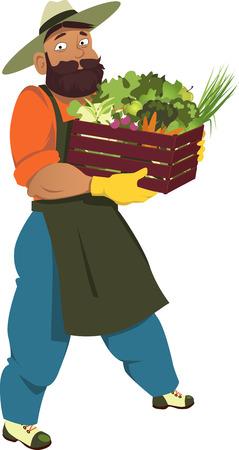 Farmer, giardiniere o frutta e verdura che trasporta una cassa piena di frutta e verdura, isolato su bianco, vettore cartone animato, non lucidi Vettoriali