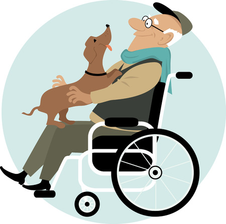 dog wheelchair: An elderly man in a wheelchair with a friendly dog on his laps Illustration