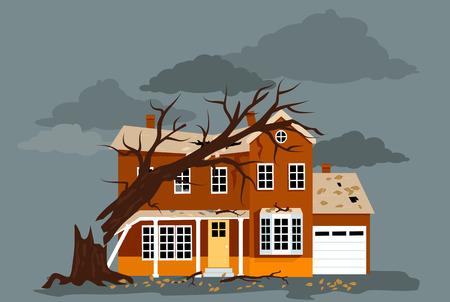 fallen tree: House damaged by a fallen tree
