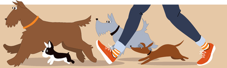 sitter: Horizontal banner with dogs and dog walkers legs, EPS 8 vector illustration Illustration