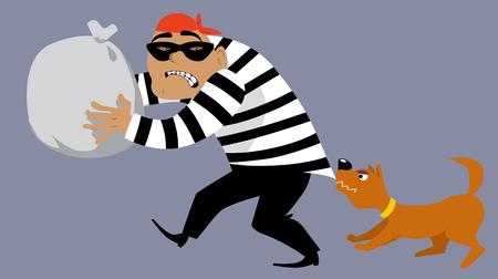 Chien arrêtant un criminel volant un sac de marchandises, illustration vectorielle EPS 8