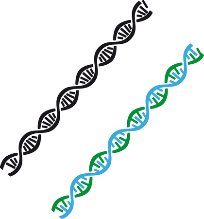 Graphic representation of a DNA molecule in color and black and white options, EPS 8 vector illustration