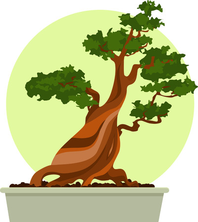 Bonsai tree in a pot, EPS 8 vector illustration
