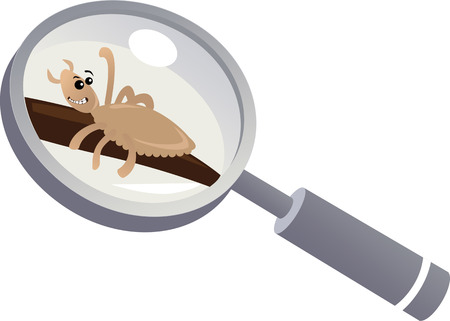 Pediculosis: a head louse under a magnifying glass, EPS 8 vector illustration Illustration