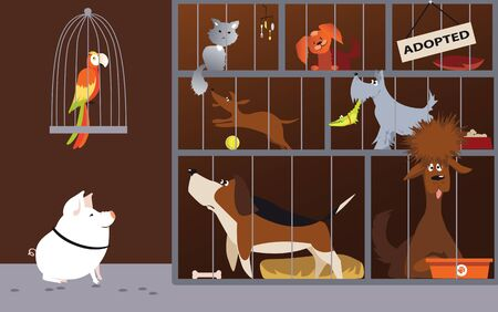 Animal shelter interior with pets waiting for adoption,  vector illustration Illustration