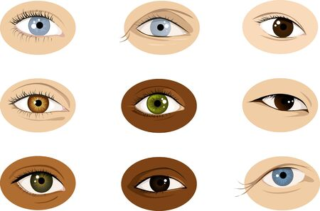 Set of realistic racially diverse vector illustrations of human eyes, male and female, vector illustration Illustration