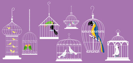 Exotic birds in decorative cages, EPS 8 vector illustration