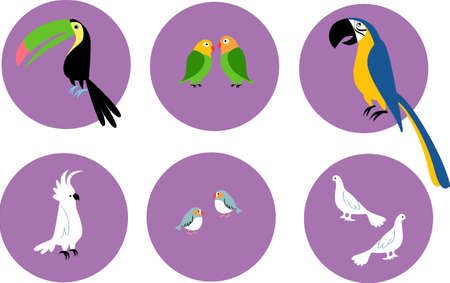 Set of pet exotic birds icons on circles, EPS 8 vector illustration
