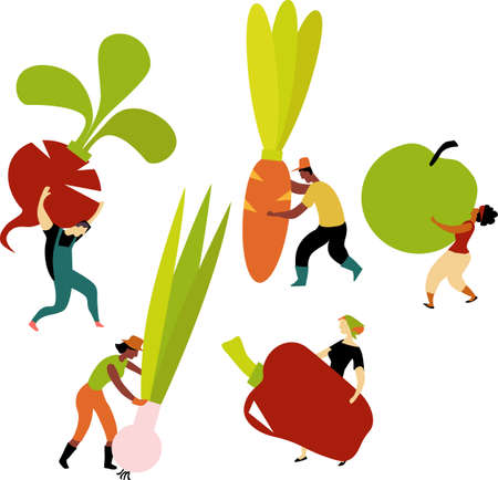 Community garden members carrying vegetables, EPS 8 vector illustration