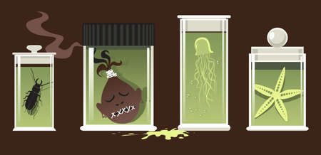 Specimen jars with natural science objects preserved, EPS 8 vector illustration, no transparencies