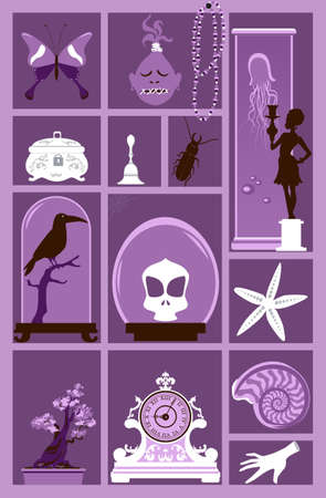 Cabinet of curiosities with a collection of weird and exotic objects, EPS 8 vector illustration
