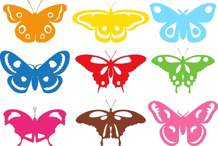 Collection of colorful different butterflies. Isolated colorful butterflies on a white background.