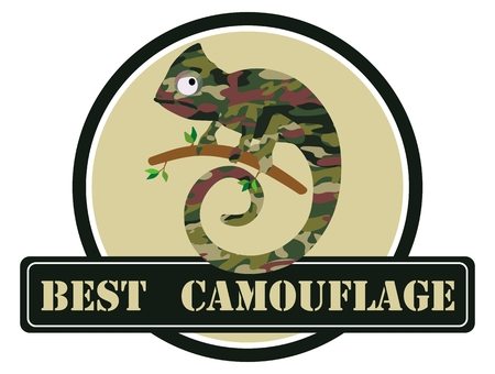 Image of a chameleon in camouflage colors. Vector illustration.