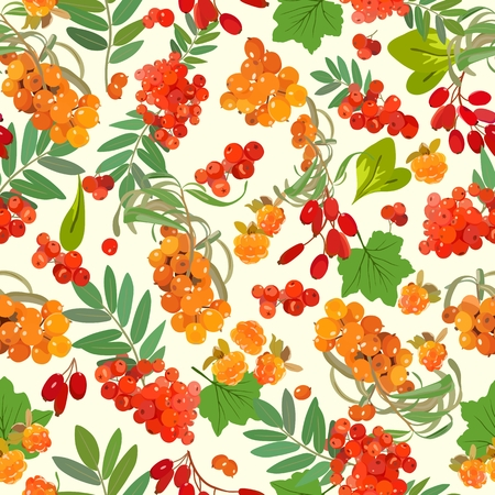 Colored pattern of orange berries and green leaves. Vector illustration.