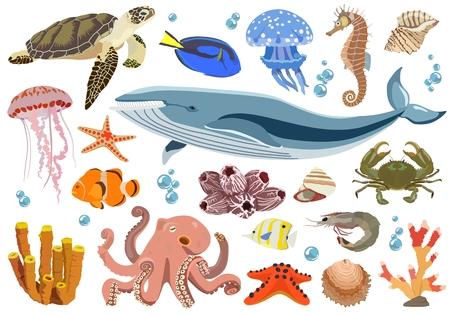 Set of marine and oceanic fauna inhabitants. Vector illustration. Illustration