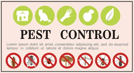 Pest control insects flat icons on the banner. Vector illustration.