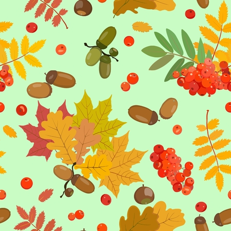 Vector pattern in autumn style with mature acorns, a cluster of mountain ash, maple, oak and rowan leaves of yellow, green and red hues. Nuts and berries.
