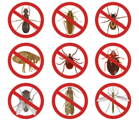 Collection of red warning signs about harmful insects. Vector illustration Stok Fotoğraf