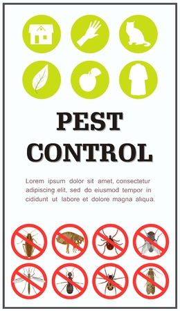 Banner for alerting against harmful insects. Home pests. Vector illustration. Illustration