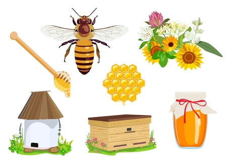 Vector set of beekeeping elements: honey, bee, flowers, apiary, beehive, wax, honeycomb, jar of honey isolated on white background. Unconventional organic medicine. Illustration