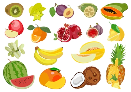 Set of multicolored ripe exotic and tropical fruits. Vector illustration. Standard-Bild - 97676917