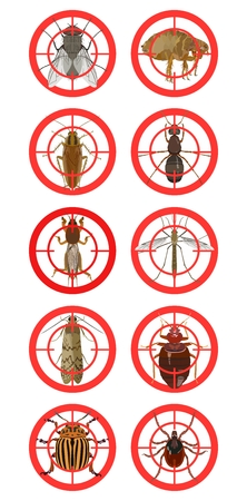 Collection of red warning signs about harmful insects. Vector illustration Illustration