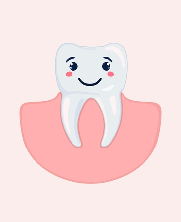 Healthy appearance of stylized molars. Vector illustration. Vectores