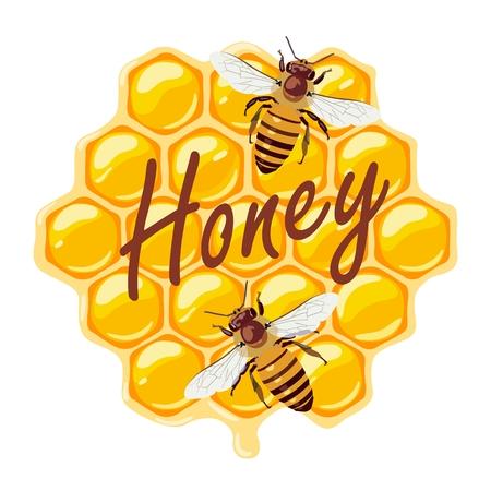 Bees and honeycombs. Vector illustration Standard-Bild - 102435631