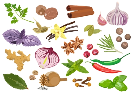Set of spices and seasonings on light background. Vector illustration Standard-Bild - 103777850