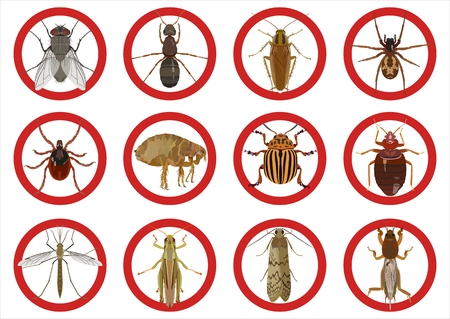 Collection of warning signs about harmful insects. Vector illustration