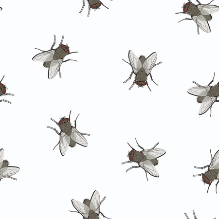 Vector pattern with image of ordinary gray flies on white background. Flying insects. Standard-Bild - 106287584