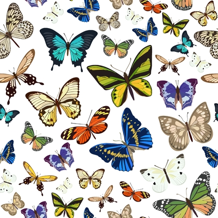 Vector pattern with the image of colored butterflies flying small and large on white background in flat style. Standard-Bild - 124128668