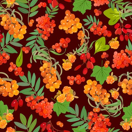 Pattern of sea-buckthorn, mountain ash, cloudberry, barberry. Vector illustration.