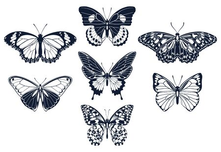 Set of butterflies icon silhouettes. Vector illustration.