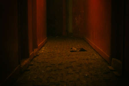 Spooky dilapidated corridor with rotter floor and red walls in a condemned building. No people.