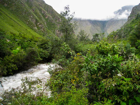 Stormy river water flow in the wild nature of the jungle in the Andes. Peru. No people. 写真素材 - 106361555