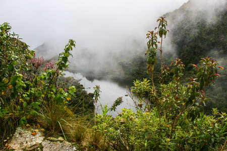 Red and yellow flowers and a river with mountains in mist on the background. Machu Picchu. No people.