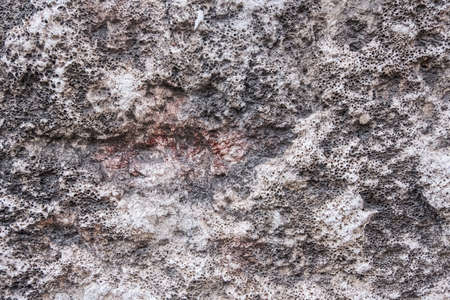 Texture of a wall in the city. World. Perfect wallpaper background. No people. 免版税图像