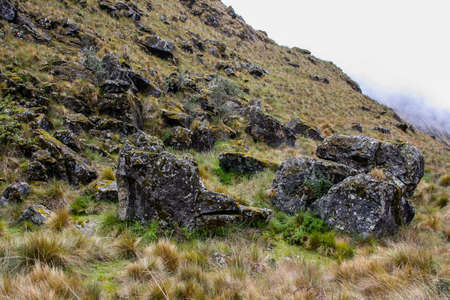 Black stones rest on a green and yellow firld on top of a mountain in the Andes. Inca Trail. Peru. No people.