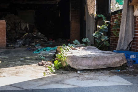 Abandoned worn interior of an old club with red brick walls full of trash with a shabby dilapidated mattress on the floor with plant over it. Sun light entering from the rotten window. 写真素材