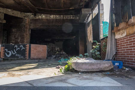 Abandoned worn interior of an old club with red brick walls full of trash with a shabby dilapidated mattress on the floor with plant over it. Sun light entering from the rotten window. Banque d'images