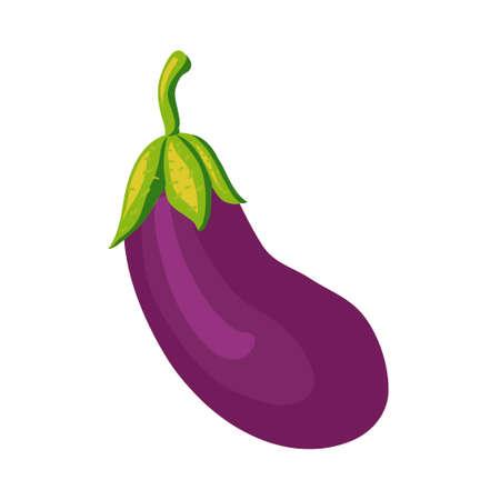 fruit stem: eggplant violet, tasty vegetable, a plant postnew, a product for cooking, vegetable food, a green fruit stem, darkly lilac fruit, the isolated eggplant illustration, a dark shadow, garden vegetable,