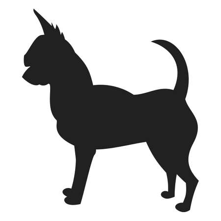 Vintage vector image of a black silhouette of a thoroughbred Chihuahua dog standing straight isolated on white background looking like a shadow of the image.