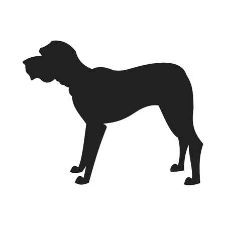Vintage vector image of a black silhouette of a thoroughbred black male Mastiff standing straight isolated on white background looking like a shadow of the image.